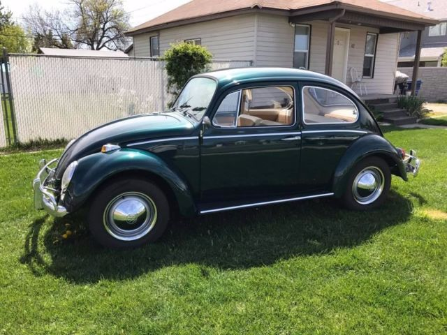 1965 volkswagen beetle vw bug one owner. Black Bedroom Furniture Sets. Home Design Ideas