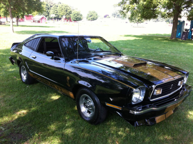 1976 ford mustang 2 cobra black gold stripes. Black Bedroom Furniture Sets. Home Design Ideas
