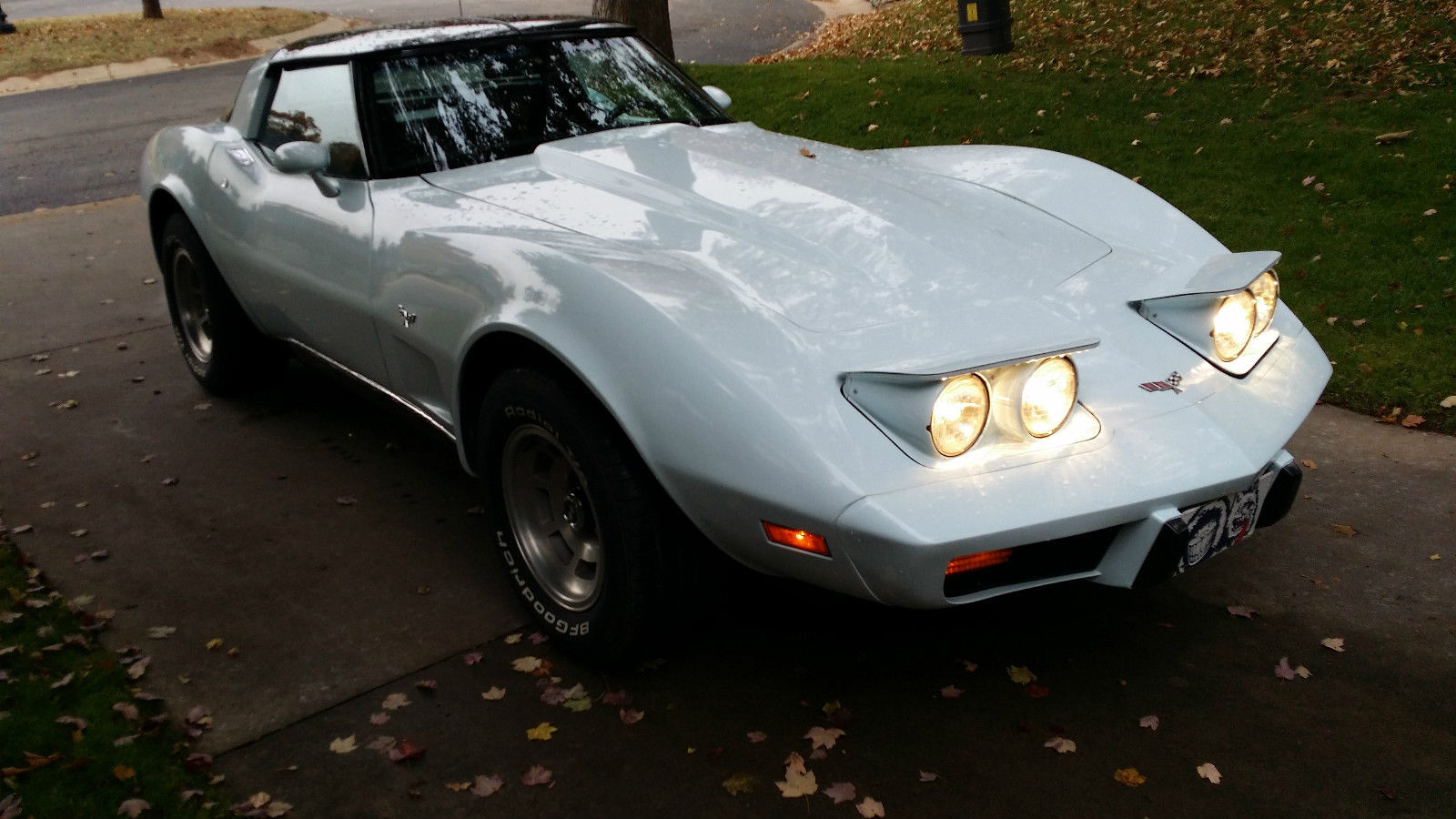 1979 Chevrolet Corvette Stingray 2 Door Sport Coupe