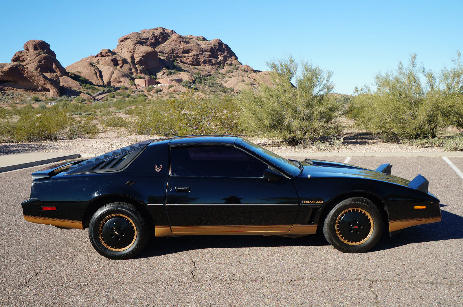 1982 pontiac firebird trans am t tops recaro edition black on black arizona car for sale in. Black Bedroom Furniture Sets. Home Design Ideas